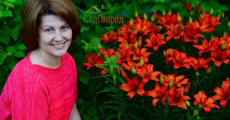 Woman near flower bed with orange lilies