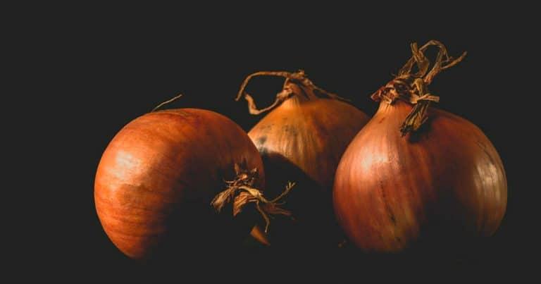 onions-3151644_960_720
