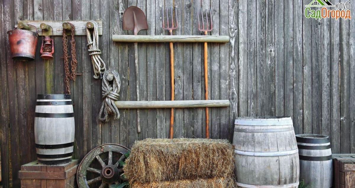 Восадули вогороде подготовка почвы осенью