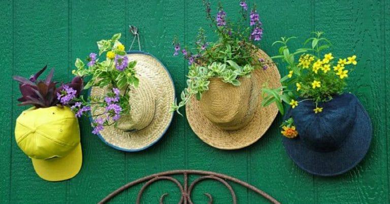 hat-planter-hanging