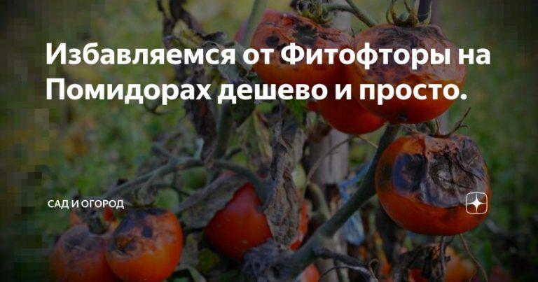 134270_53318.jpg
