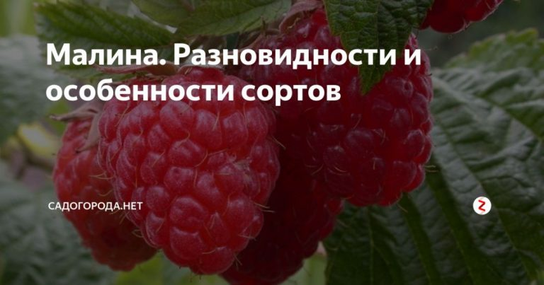 134994_6110.jpg