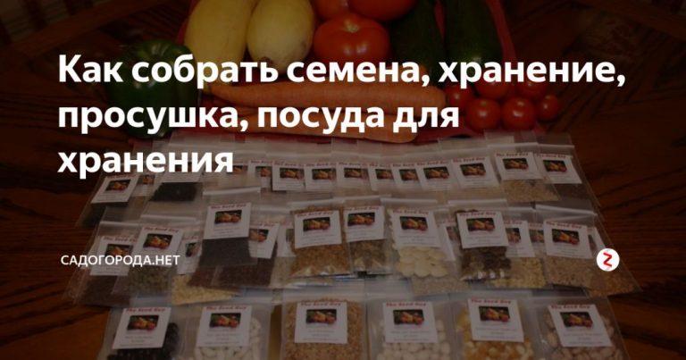 135068_10197.jpg