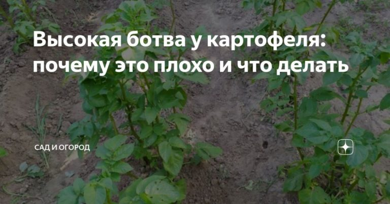 135340_6091.jpg