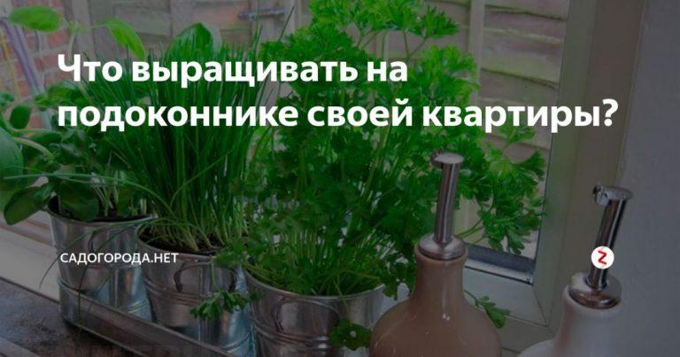 135760_62694.jpg