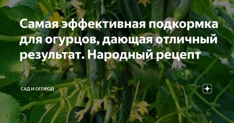 136278_8449.jpg