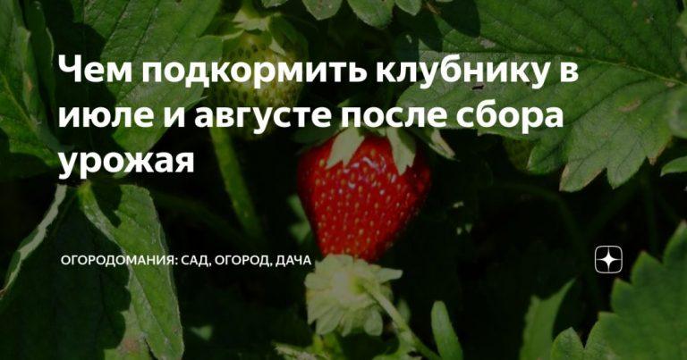 136534_91825.jpg