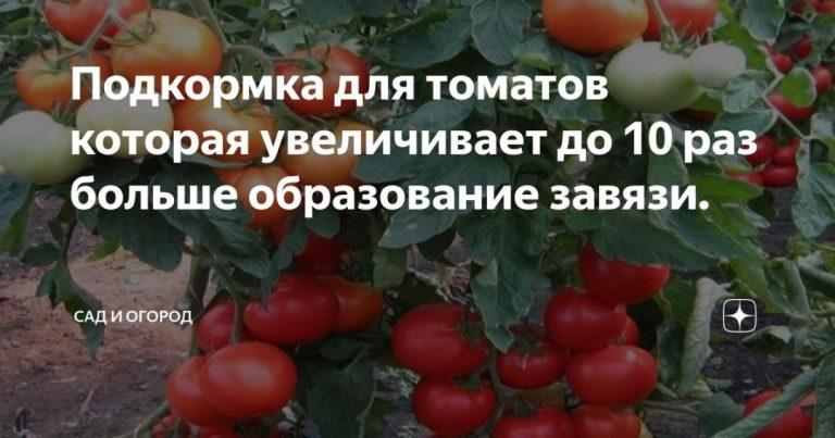 136732_65429.jpg
