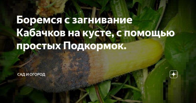 136998_15360.jpg