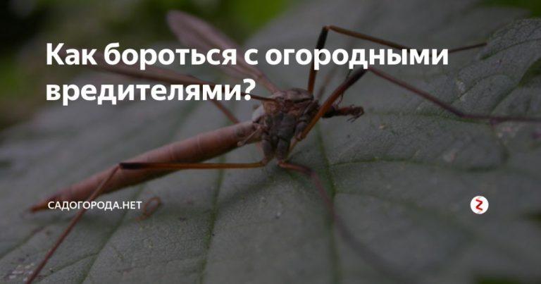 137190_54021.jpg
