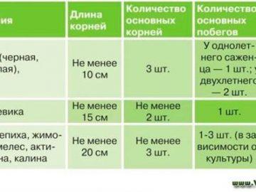 345629_10131.jpg